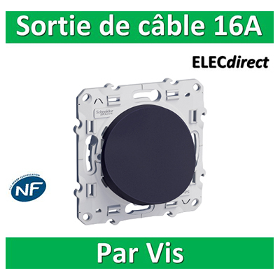 Schneider Odace - Sortie de câble - Fixation VIS ANTHRACITE- s540662