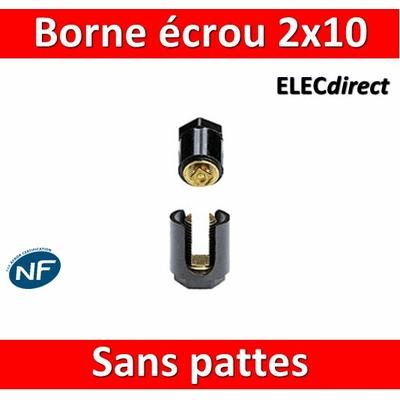 Legrand - Borne écrou 6 pans sans pattes 2 x 10 mm2 - 034031