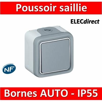 Legrand Plexo - Bouton poussoir 10A - 230V - IP55/IK07  - 069720