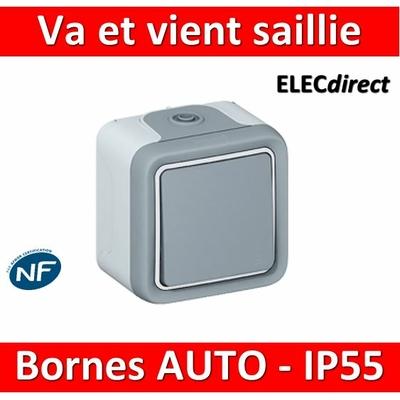 Legrand Plexo - Va-et-Vient 10A - 230V - IP55/IK07 - 069711