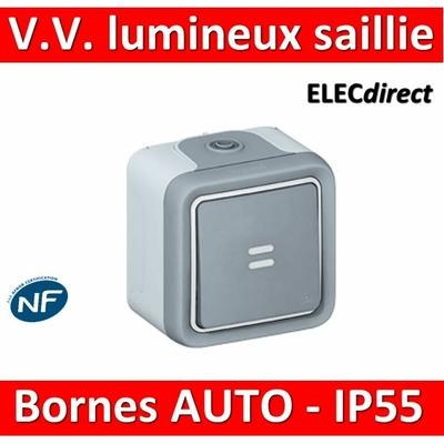 Legrand Plexo - Va-et-Vient à voyant lumineux 10A - 230V - IP55/IK07 - 069713