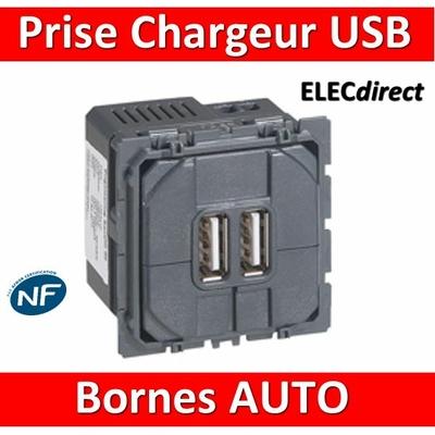 Legrand Céliane - Mécanisme Double Prise chageur USB - 067462