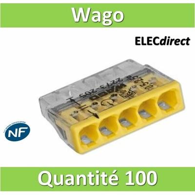 WAGO - Boîte de 100 Bornes auto fils rigide 5 x 2,5mm2 - WAG 2273-205
