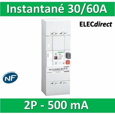 Schneider - Disjoncteur de branchement EDF 30/60A instantané - 500mA - bipolaire - R9FT660