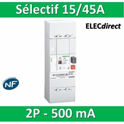 Schneider - Disjoncteur de branchement EDF 15/45A sélectif - 500mA - bipolaire - 13120