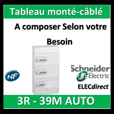 Schneider - Tableau monté-câblé 3 rangées 13 modules AUTO RESI9