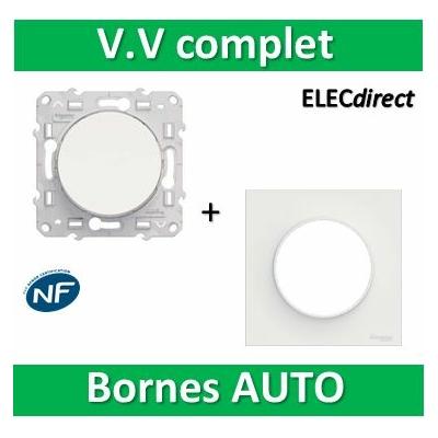 Schneider Odace - Va-et-Vient + plaque - complet - 10A - 250V - s520204+s520702