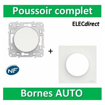 Schneider Odace - Bouton poussoir + plaque - complet - 10A - 250V - s520206+s520702