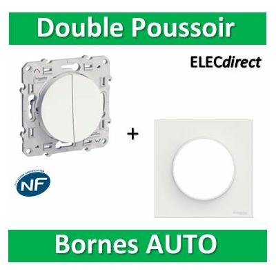 Schneider Odace - Double Poussoir 10A + plaque - complet - 250V - s520216+s520702