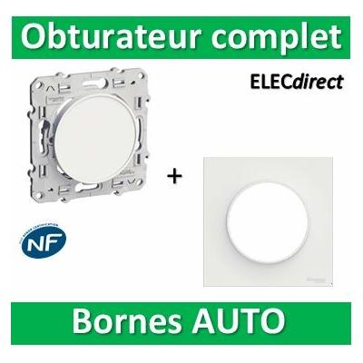 Schneider Odace - Obturateur blanc à vis + plaque - complet - s520666+s520702