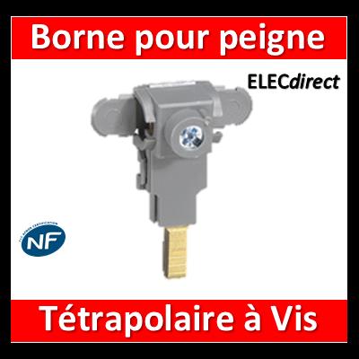 Legrand - Borne de raccordement pour peigne tétrapolaire à vis - 405208