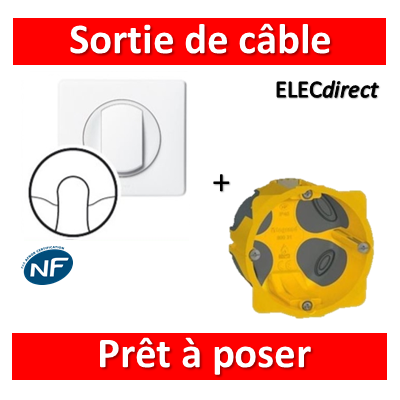 Legrand Céliane - Prêt à poser - Sortie câble complet + boîte batibox 1 poste BBC