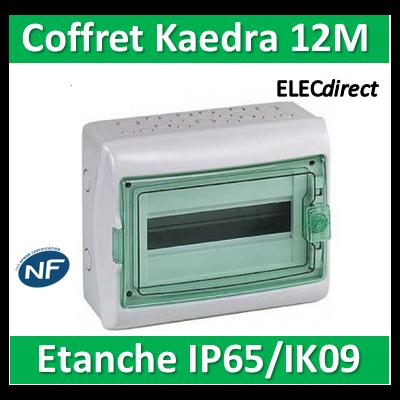 Schneider - Coffret Kaedra 1 rangée 12M - IP65/IK09 - 13962