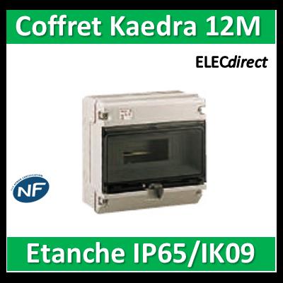 Schneider - Coffret Kaedra 1 rangée 12M - IP65/IK09 - KDR35131