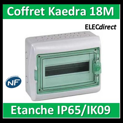 Schneider - Coffret Kaedra 1 rangée 18M - IP65/IK09 - 13963
