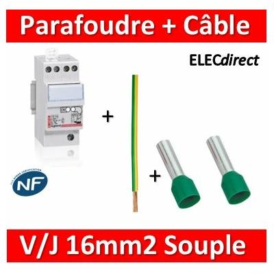Legrand - Parafoudre bipolaire 220V - Type 2 + Câble 16mm2 L.50cm V/J souple + embouts