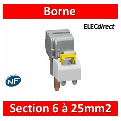 Legrand - Borne de raccordement à connexion auto - section 6 à 25 mm² - 405206