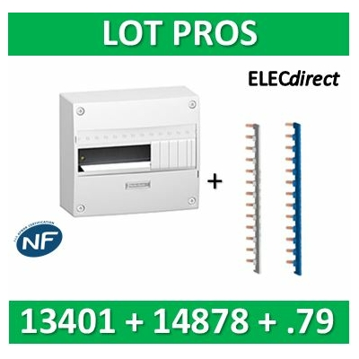 Schneider - LOT PROS - Coffret électrique Opale 13 modules - 1R de 13M + peignes PH+N - 13401+14878+14879