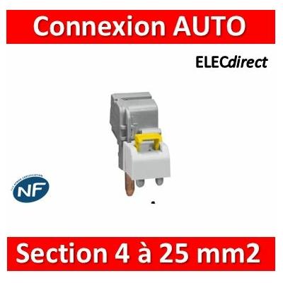 Legrand - Borne de raccordement à connexion auto - section 4 à 25 mm² - 405207