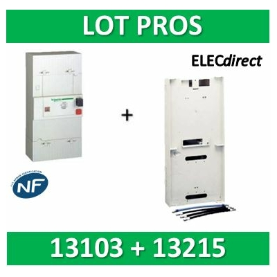 Schneider - Disjoncteur de branchement EDF 30/60A instantané + platine disjoncteur 4P - 500mA - 13103+R9H13215