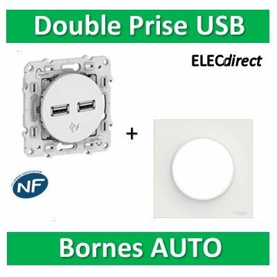 Schneider Odace - Prise Double USB + plaque -  S520407+S520702