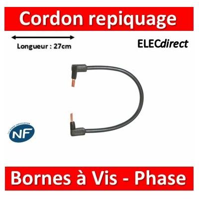Legrand - Cordon de repiquage Phase pour bornes à vis - 10mm2 - 404908
