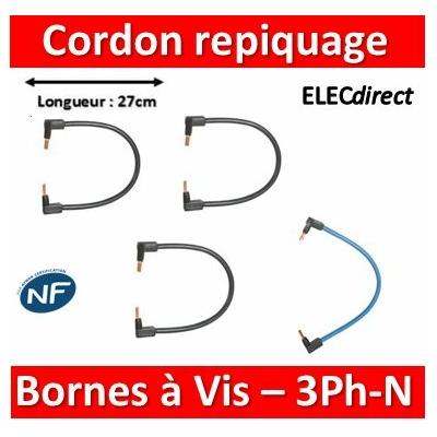 Legrand - Cordon de repiquage 3 Phases+Neutre pour bornes à vis - 10mm2 - 404908x3+404907