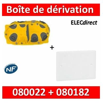 Legrand Batibox - Boîte double BBC P40 + Couvercle universel 155 x 85 = boîte de dérivation - 080022 + 080182