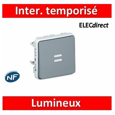 Legrand - Inter. temporisé lumineux Prog Plexo composable gris - 10 AX - 069504