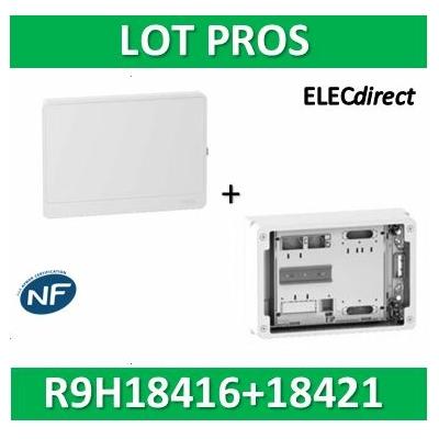 Schneider - Habillage + Porte + Platine pour Disjoncteur branchement + compteur - R9H18416+R9H18421