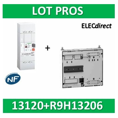Schneider - Disjoncteur de branchement EDF 15/45A sélectif + platine disjoncteur - 13120+R9H13206
