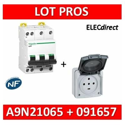 Legrand Plexo - Prise de courant 3P+N+T 20A + Protection 16A Schneider - IP55/IK08 - 091657+A9N21065