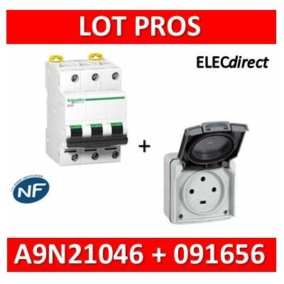 Legrand Plexo - Prise de courant 3P+T 20A + Protection 20A Schneider - IP55/IK08 - 091656+A9N21046