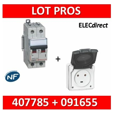 Legrand Plexo - Prise de courant 2P+T 20A + Protection 20A Legrand - IP55/IK08 - 091655+407785