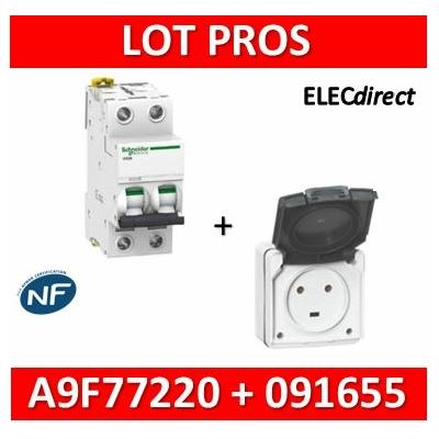 Legrand Plexo - Prise de courant 2P+T 20A + Protection 20A Schneider - IP55/IK08 - 091655+A9F77220
