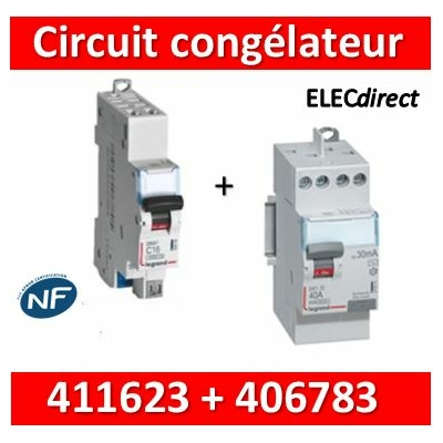 LEGRAND - Interrupteur Différentiel 2P - 40A - 30ma Type HPI + DPN 16A Départ Haut - 411623+406783