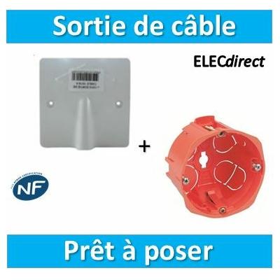 SIB - Sortie de câble 20/32A - à vis dim. 100x100 + Boîte - P11032+18640