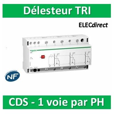Schneider - CDS tri, contacteur délecteur 1 voie par phase 415VCA - A9C15913