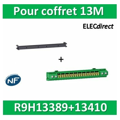 Schneider - Bornier de terre isolé coffrets RESI9/Pragma 4x16 + 20x2,5 + support 13M - R9H13410+R9H13389