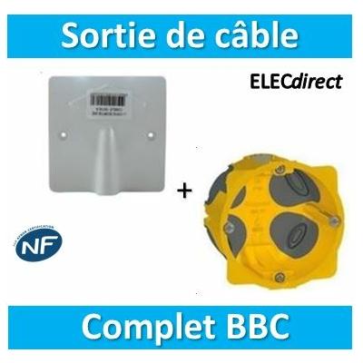 SIB - Sortie de câble 20/32A - à vis dim. 100x100 + Boîte legrand Batibox BBC - P11032+080086