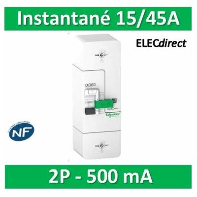 Schneider - Disjoncteur de branchement EDF 15/45A instantané - 500mA - bipolaire - R9FT645