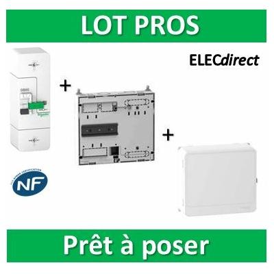Schneider - Disjoncteur de branchement EDF + platine + habillage + porte - R9FT645+R9H13206+R9H13418