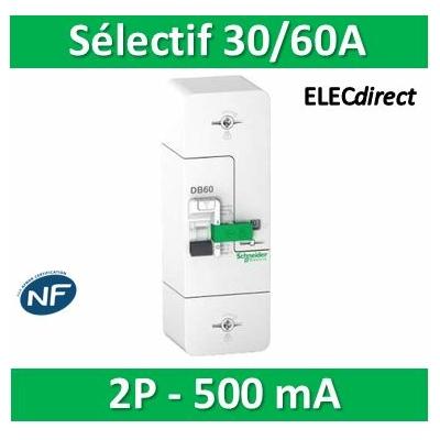 Schneider - Disjoncteur de branchement EDF 60A - fixe -sélectif - 500mA - bipolaire - R9FS660