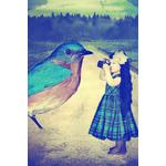 Poster-Decoration-Art-Mural_Poetique_Imaginaire_Illsutration_Fille_Oiseau_LittleBird_40x60cm
