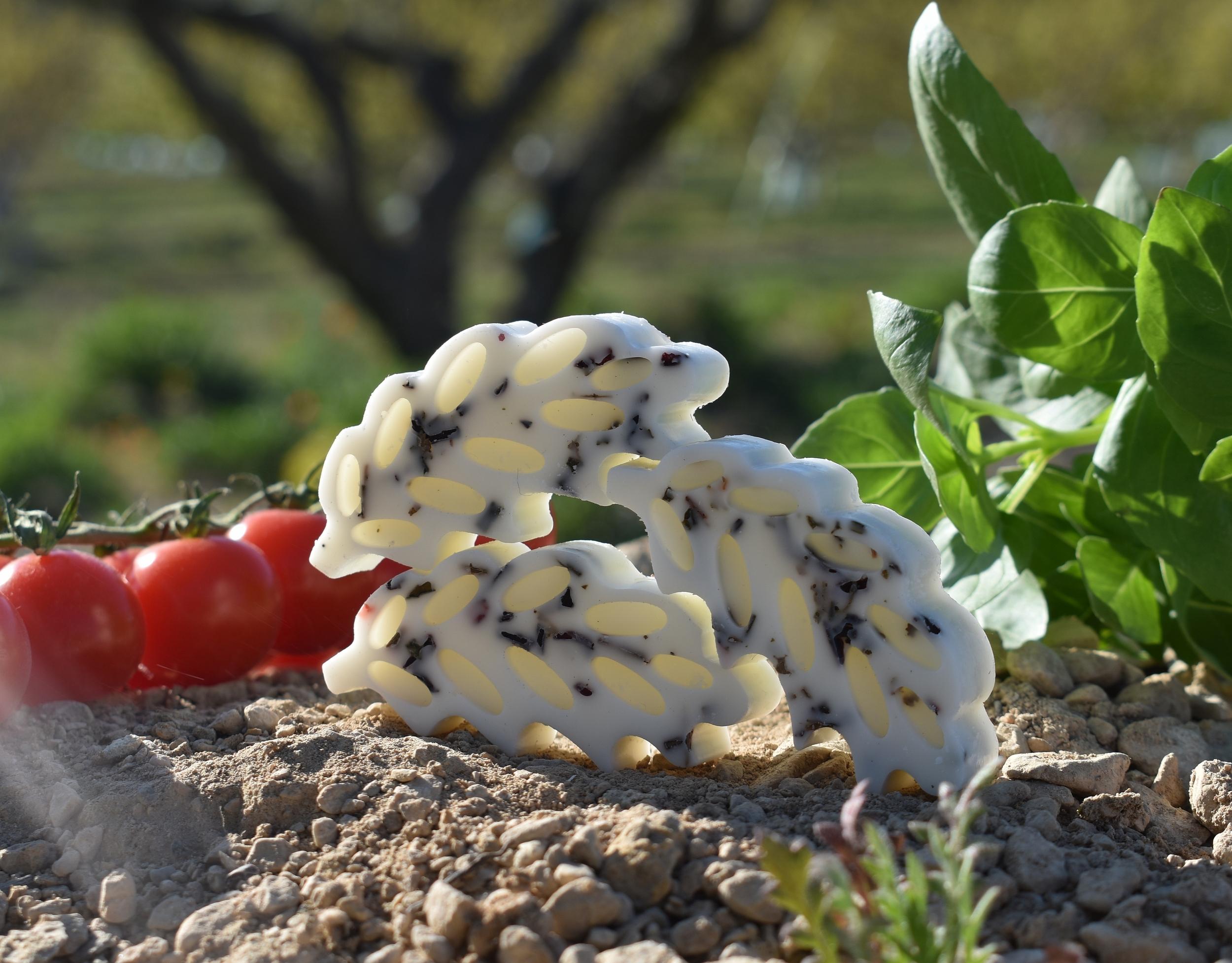 fondant épi parfumé tomate basilic