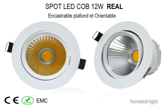 spot led cob 12 w encastrable et orientable real spot led spot led encastrable orientable. Black Bedroom Furniture Sets. Home Design Ideas