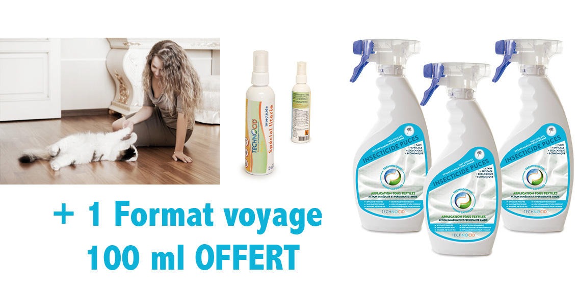 traitement puces de parquet pack 3 x 500ml 100 ml voyage offert. Black Bedroom Furniture Sets. Home Design Ideas