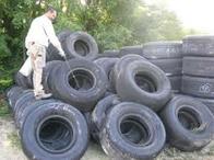 pneu moustique