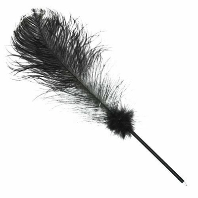 5087-stylo-noir-avec-plume
