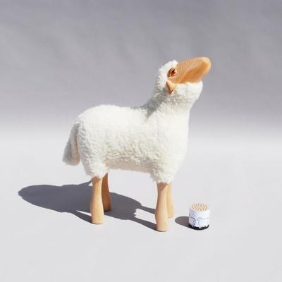2778-agneau-blanc-qui-regarde-vers-le-haut